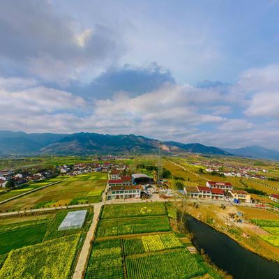 新风村农田文化